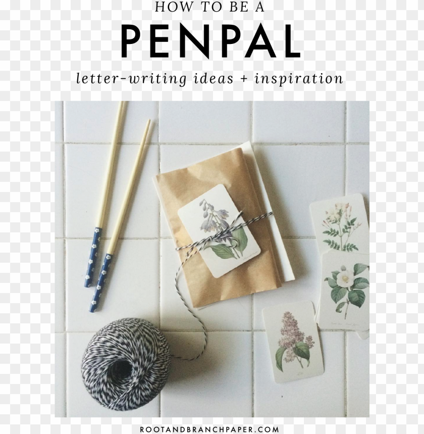 free PNG how to be a pen pal - pierre-joseph redoute camelias yard si PNG image with transparent background PNG images transparent