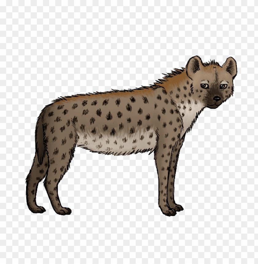 free PNG hyena art png PNG images transparent