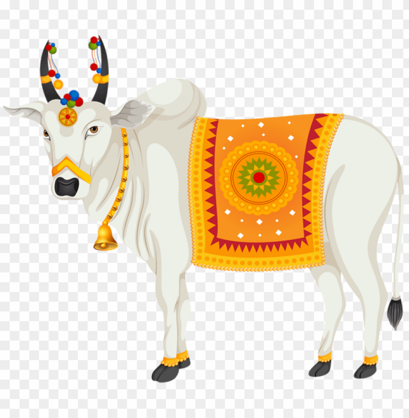 Download India Holy Cow Transparent Clipart Png Photo Toppng