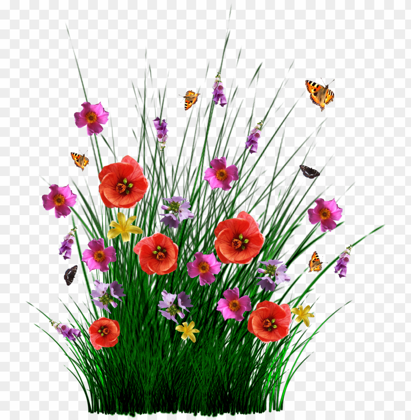 free PNG isolated spring flowers grass meadow - pasto con flores PNG image with transparent background PNG images transparent