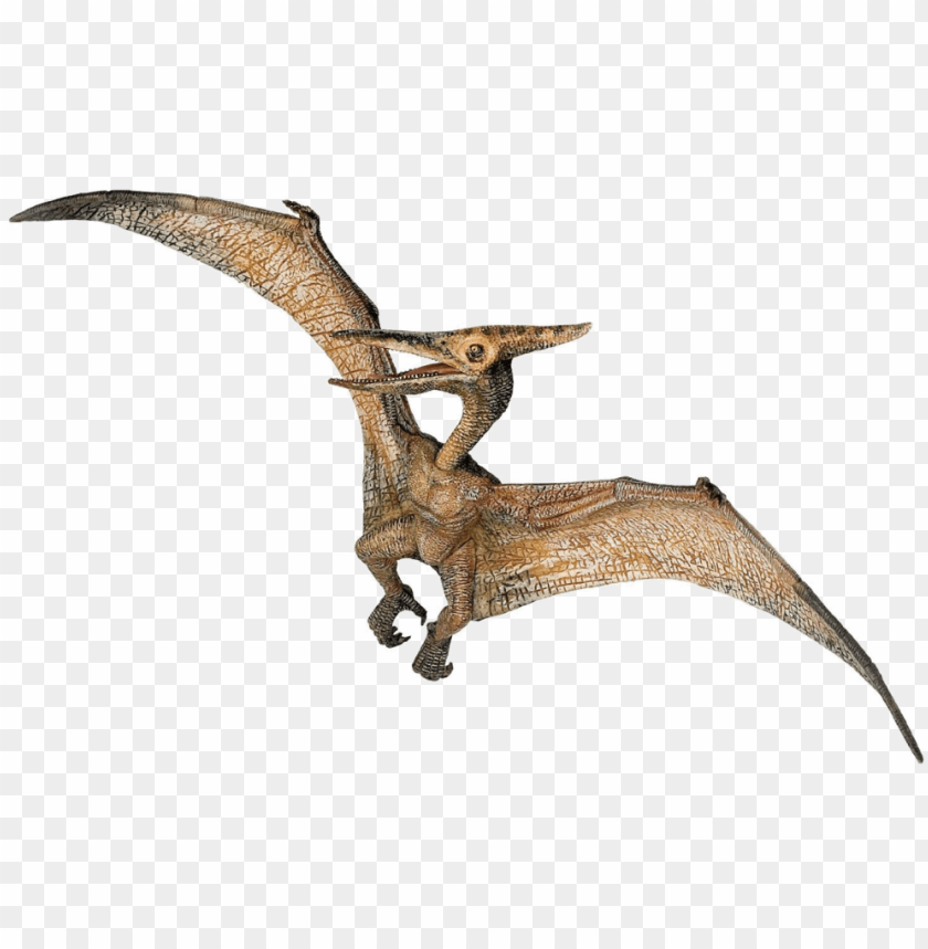 free PNG jurassic park playfield pterodactyl PNG image with transparent background PNG images transparent
