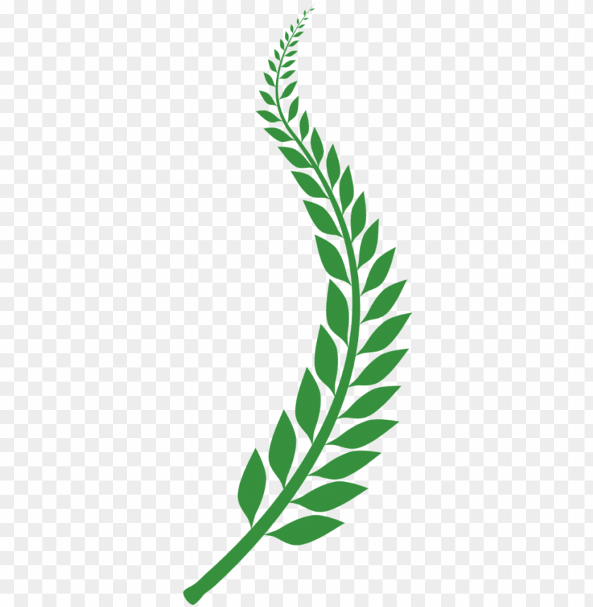 free PNG laurel vector png graphic royalty free stock - laurel png clipart PNG image with transparent background PNG images transparent