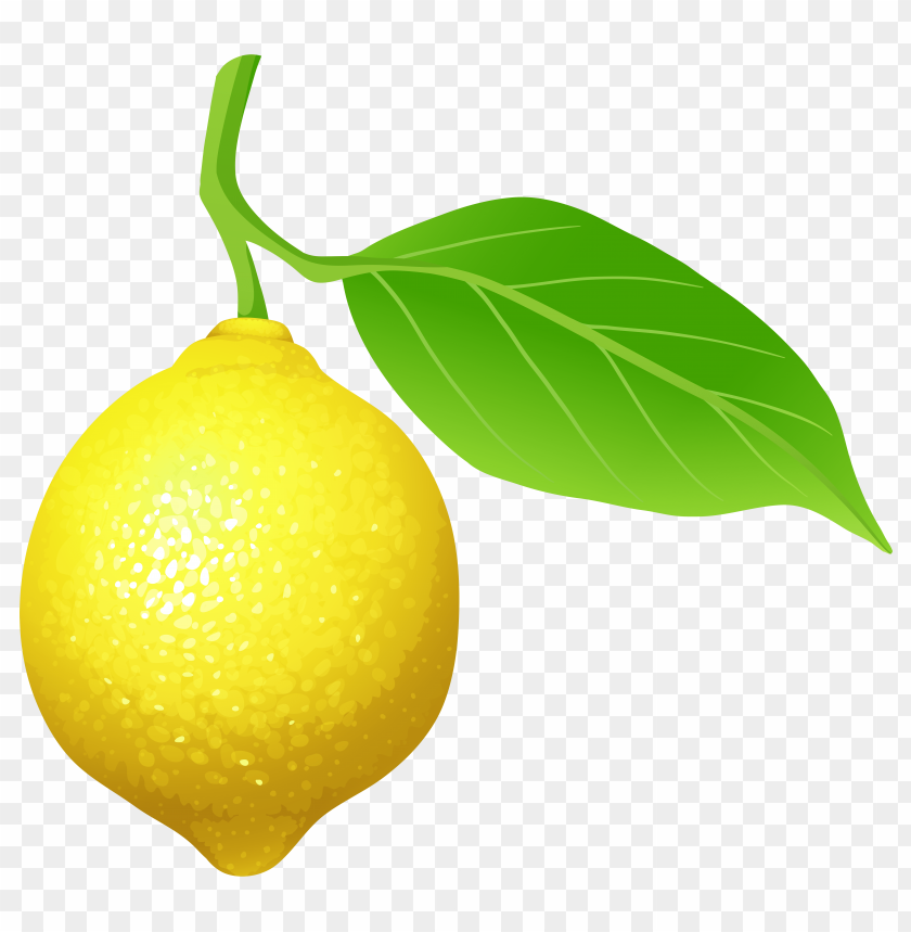 free PNG Download lemon clipart png photo   PNG images transparent