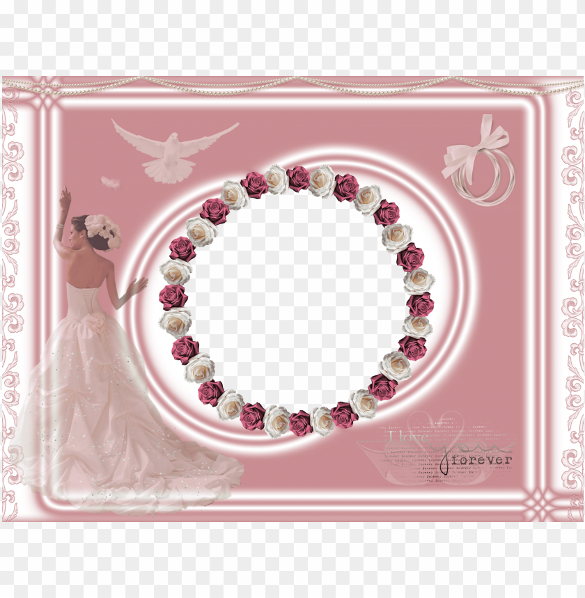 light pink wedding frame with roses background best stock