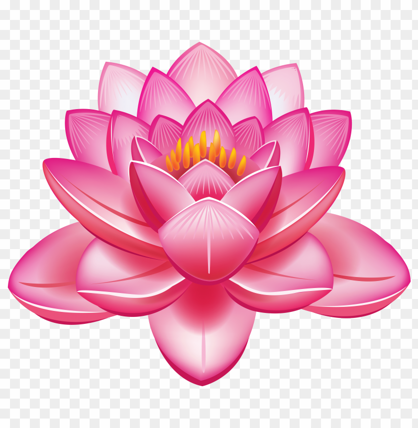 Download Lotus Flower Clipart Png Photo Toppng