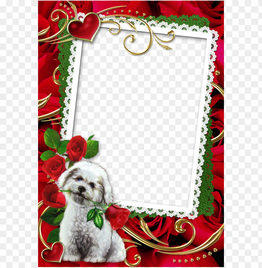 love photo frame png clipart picture frames - love frame PNG
