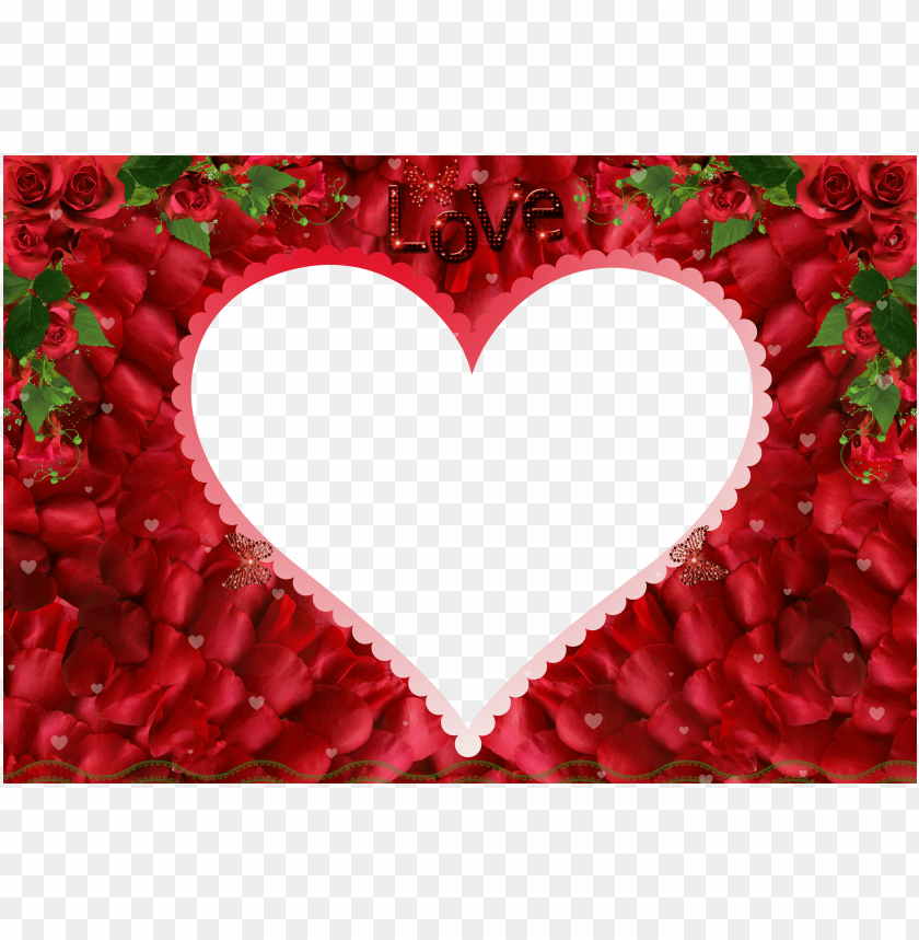 0ccacf53469 free PNG love rose redphoto frame background best stock photos PNG images  transparent