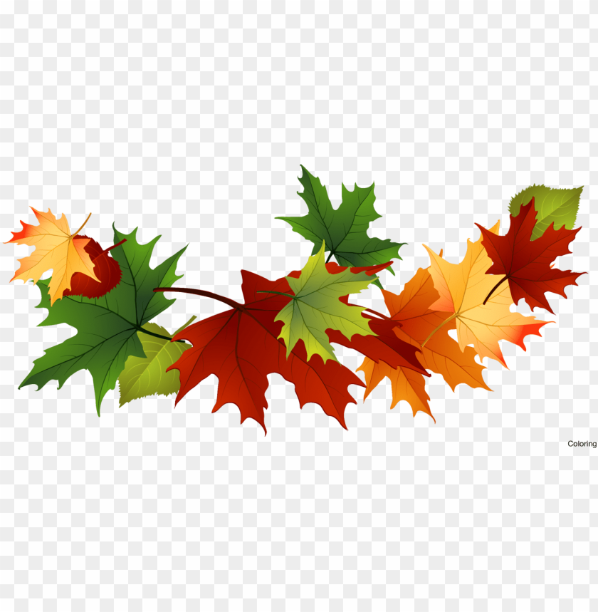 free PNG majestic autumn clipart fall leaves clip art - fall leaves transparent background PNG image with transparent background PNG images transparent