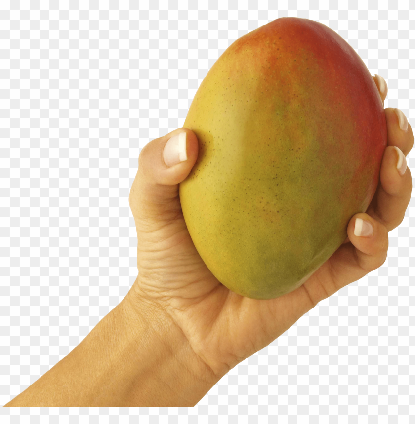 Download Pictures Of Mango