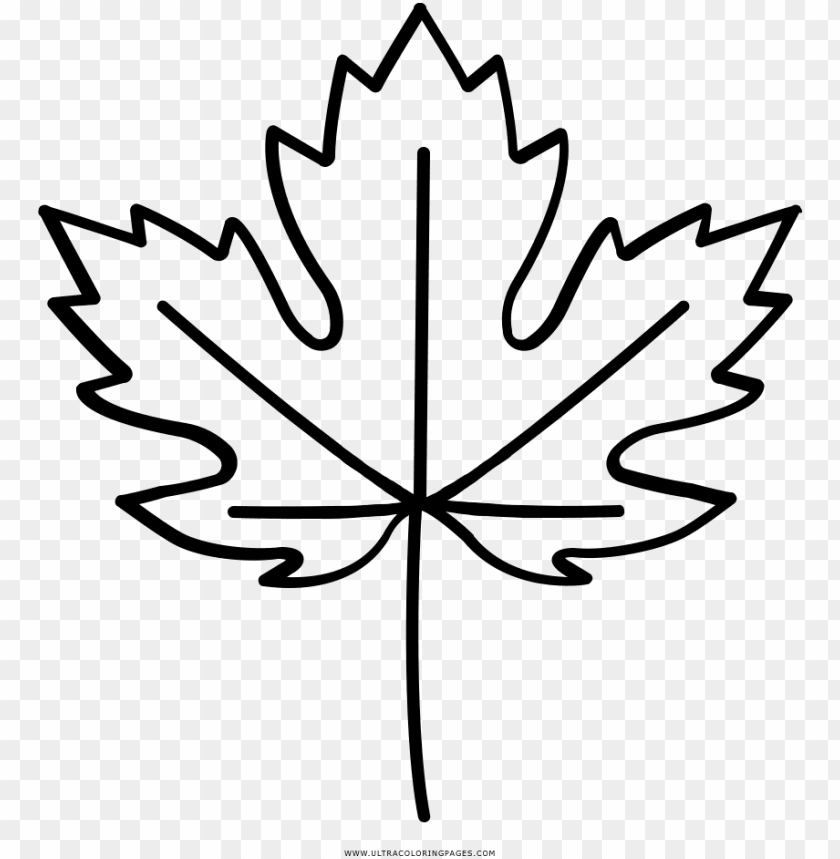 Maple Leaf Coloring Page Pages Toronto Maple Leafs Png Image With Transparent Background Toppng