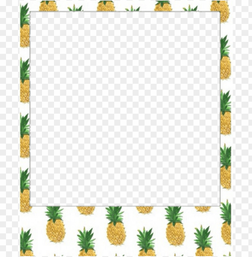 free PNG marco polaroid PNG image with transparent background PNG images transparent