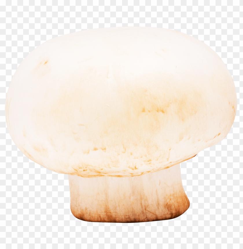 free png mushroom PNG images transparent
