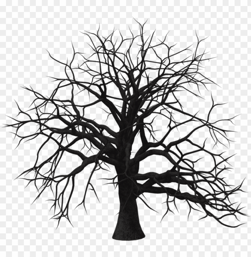 old tree transparent background png - silhouette PNG image with transparent background@toppng.com