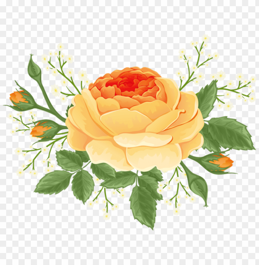 Download Orange Rose With White Flowers Png Images Background Toppng