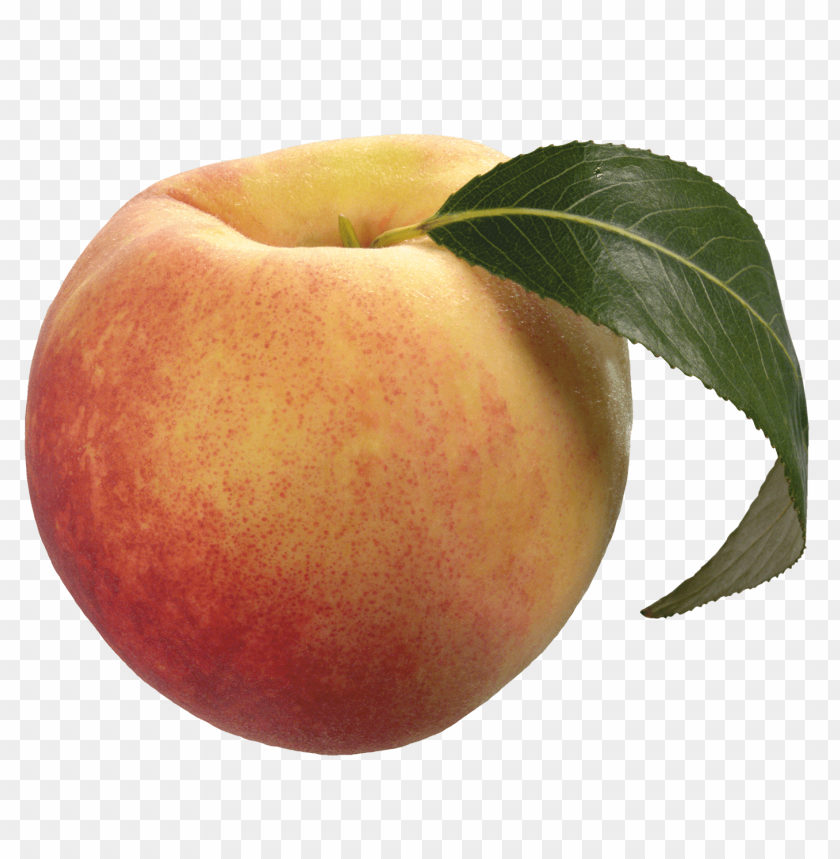 free png peach with green leaf PNG images transparent