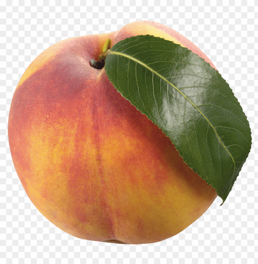 free png peach with leaf PNG images transparent