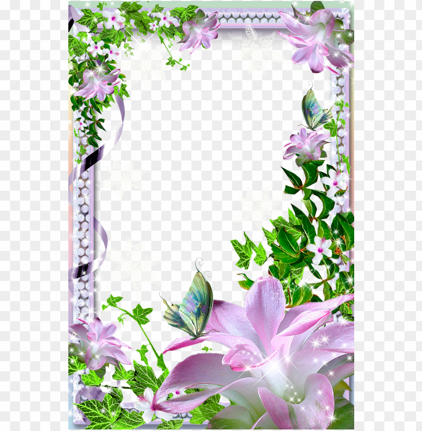 free PNG photo frame with pink lilies background best stock photos PNG images transparent
