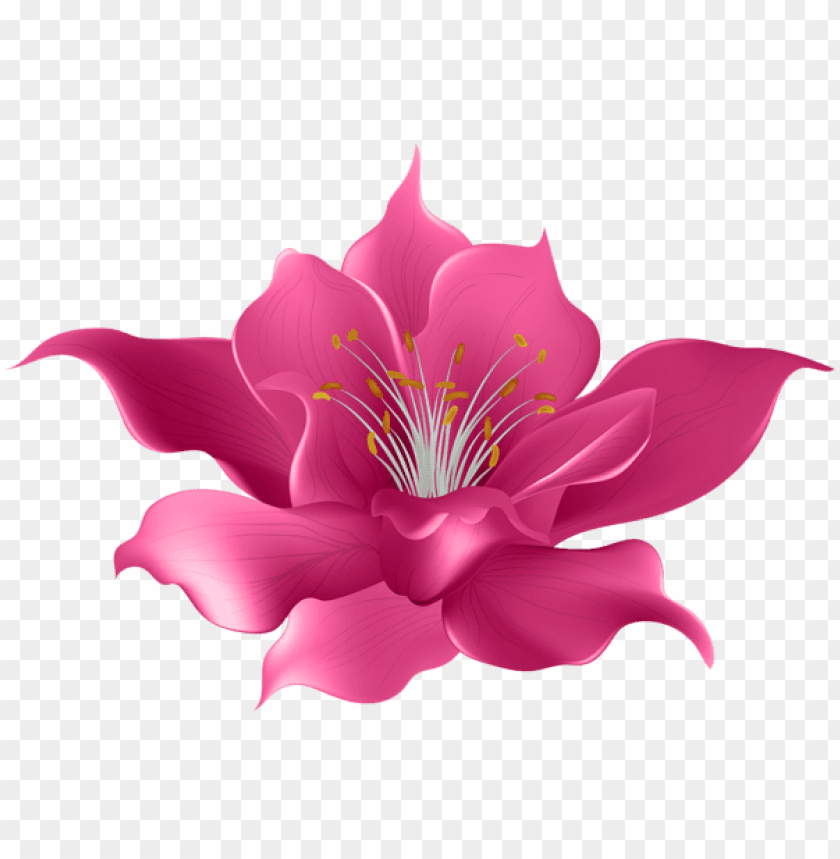 Download Pink Flower Transparent Png Images Background Toppng