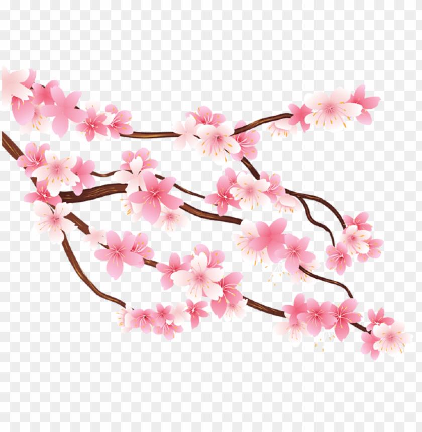 free PNG Download pink spring branch png images background PNG images transparent