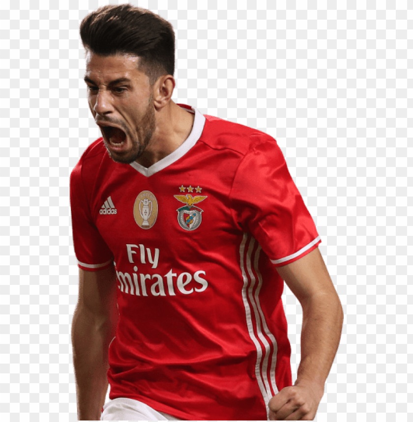 free PNG pizzi PNG images transparent