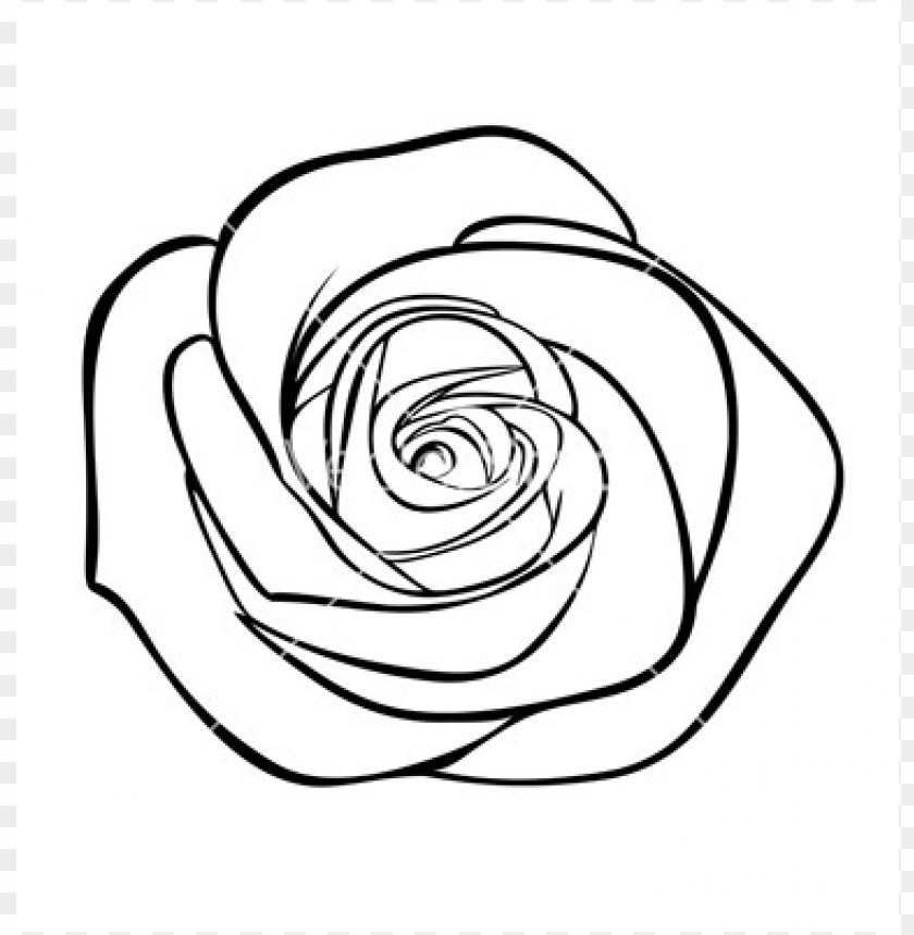 Download Png Rose Outline S Clipart Png Photo Toppng
