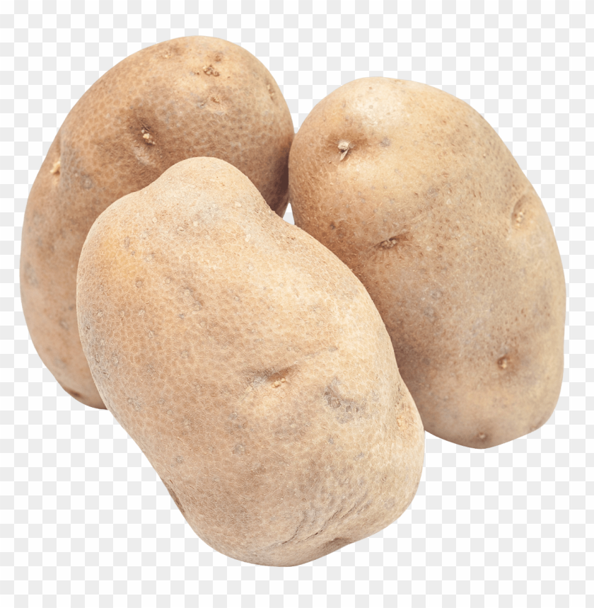 free PNG Download potato png images background PNG images transparent
