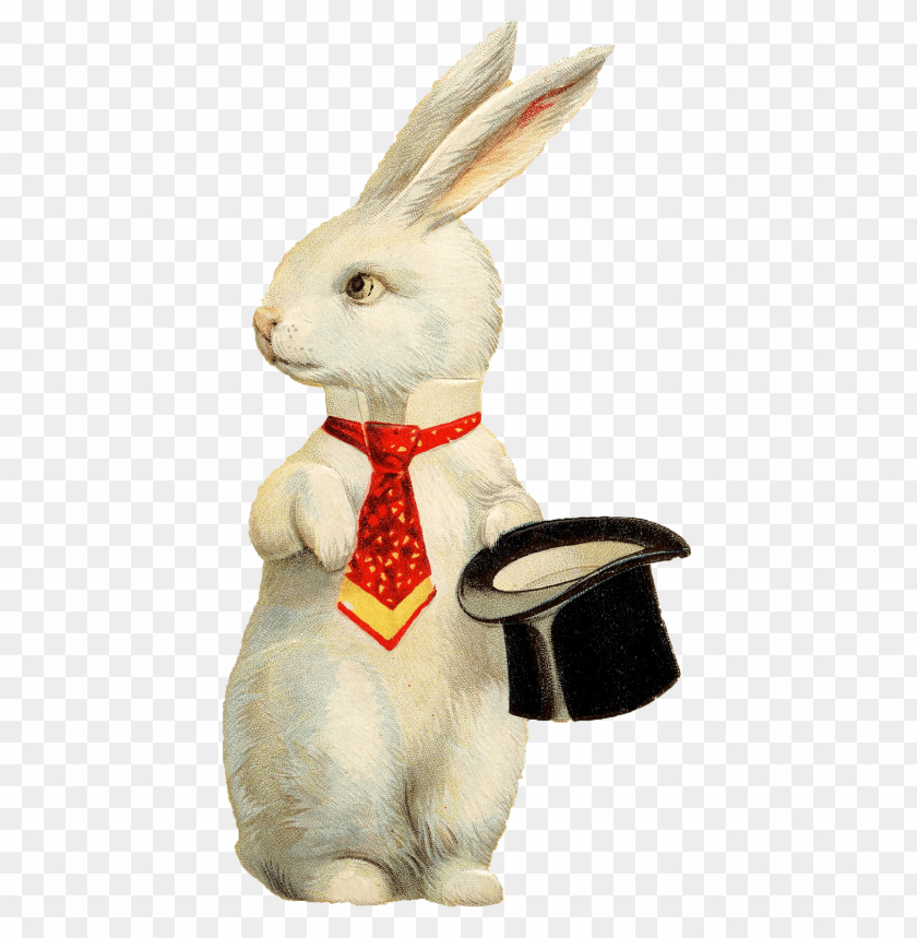 free PNG rabbit hat png background image png - Free PNG Images PNG images transparent