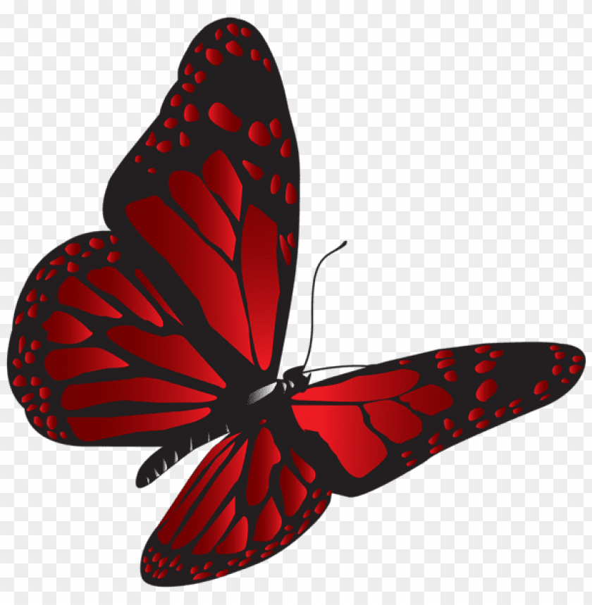 Download Red Butterfly Png Clipart Png Photo Toppng