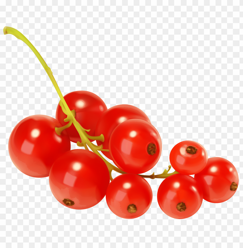 free png red currants PNG images transparent