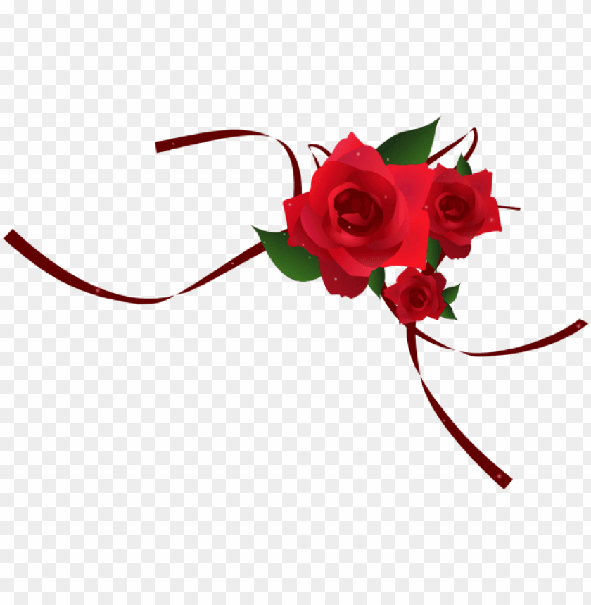 free PNG red rose border, red, red rose, red rose vector - portable network graphics PNG image with transparent background PNG images transparent