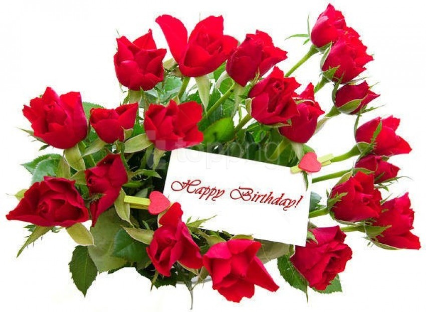 Red Roses Happy Birthday Card Background Best Stock Photos