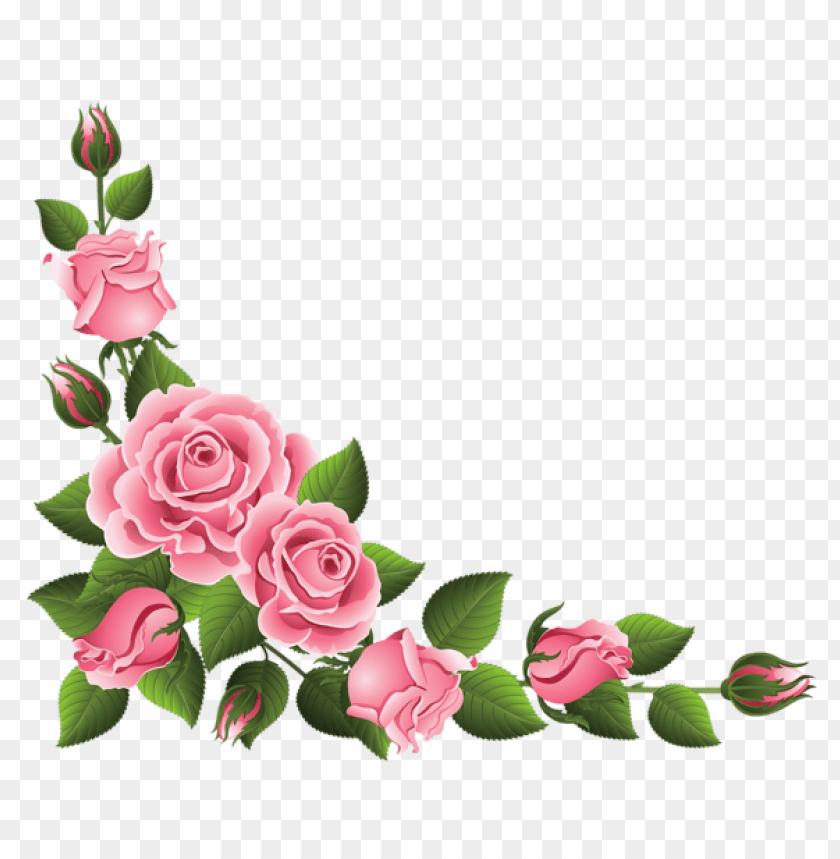 Rose Fleur Png Image With Transparent Background Toppng