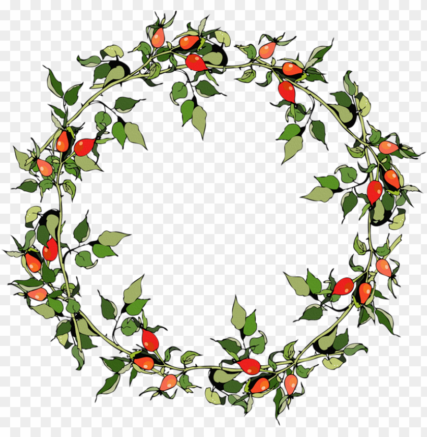 Christmas Graphics Transparent.Rose Hips Christmas Frames Vector Graphics Png Image With
