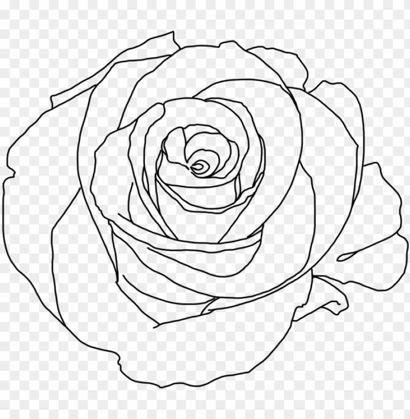 Rose Png Tumblr Download Minimalist Rose Aesthetic Art Png Image