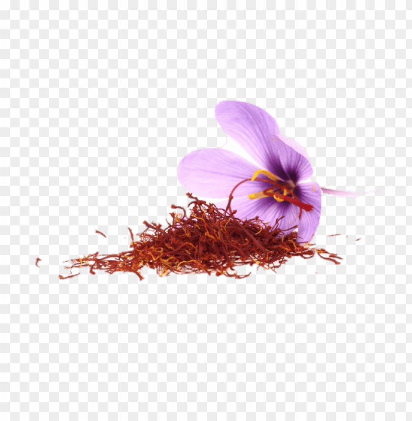 free PNG Saffron PNG, Download Saffron PNG, زعفران PNG, صور Saffron PNG image with transparent background PNG images transparent