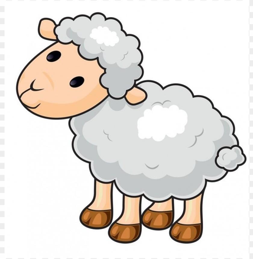 Sheep Clip Art