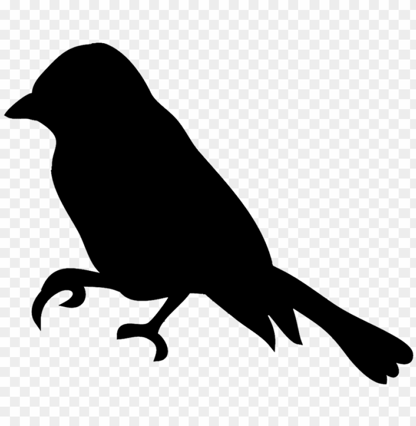 silhouette of flying bird png small bird silhouette - eagle