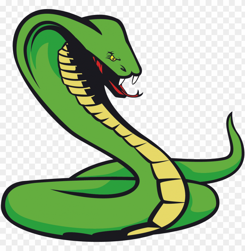 free PNG snake tattoo png transparent quality images - snake png clipart PNG image with transparent background PNG images transparent