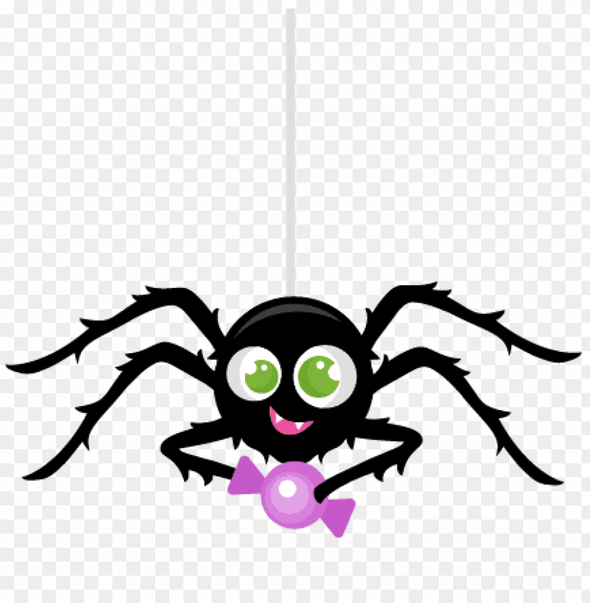 Spider Png Images Transparent Free Download Cute Halloween