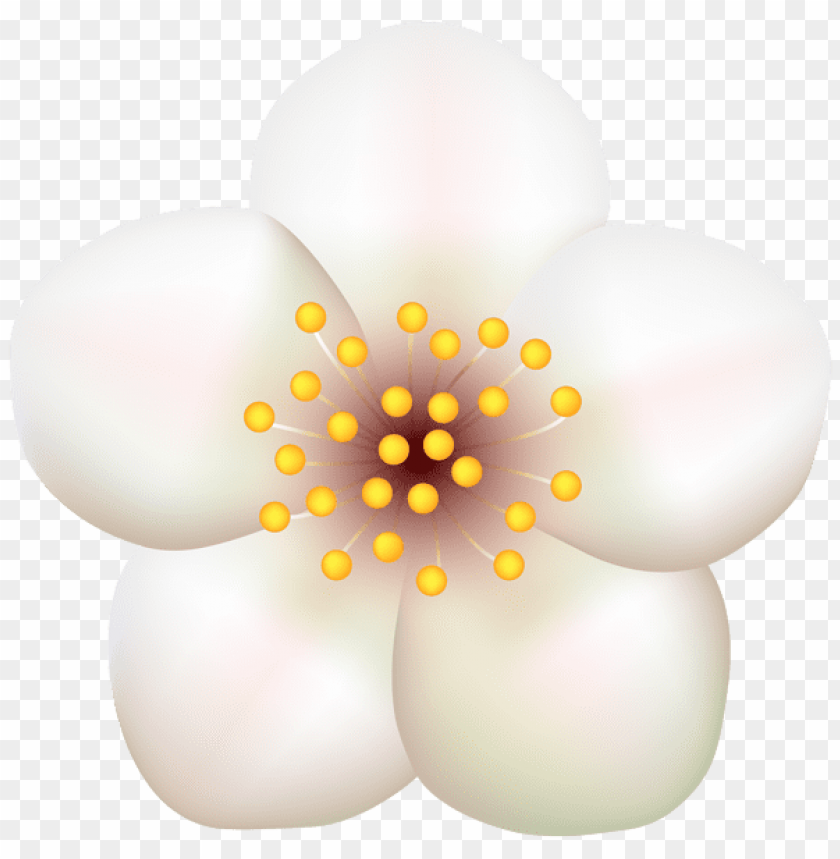 free PNG Download spring blooming tree flower transparent png images background PNG images transparent