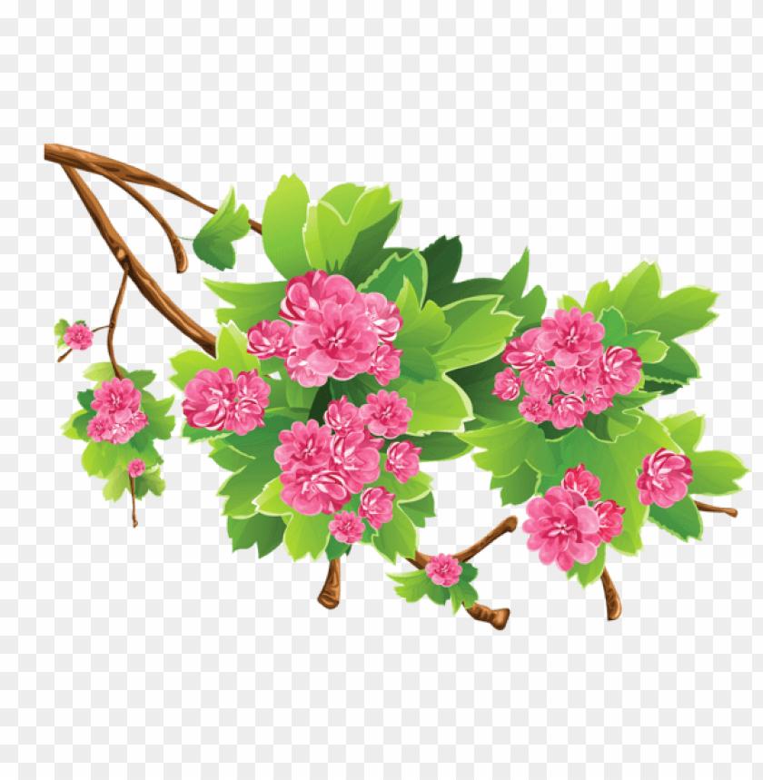free PNG Download spring branch transparentpicture png images background PNG images transparent