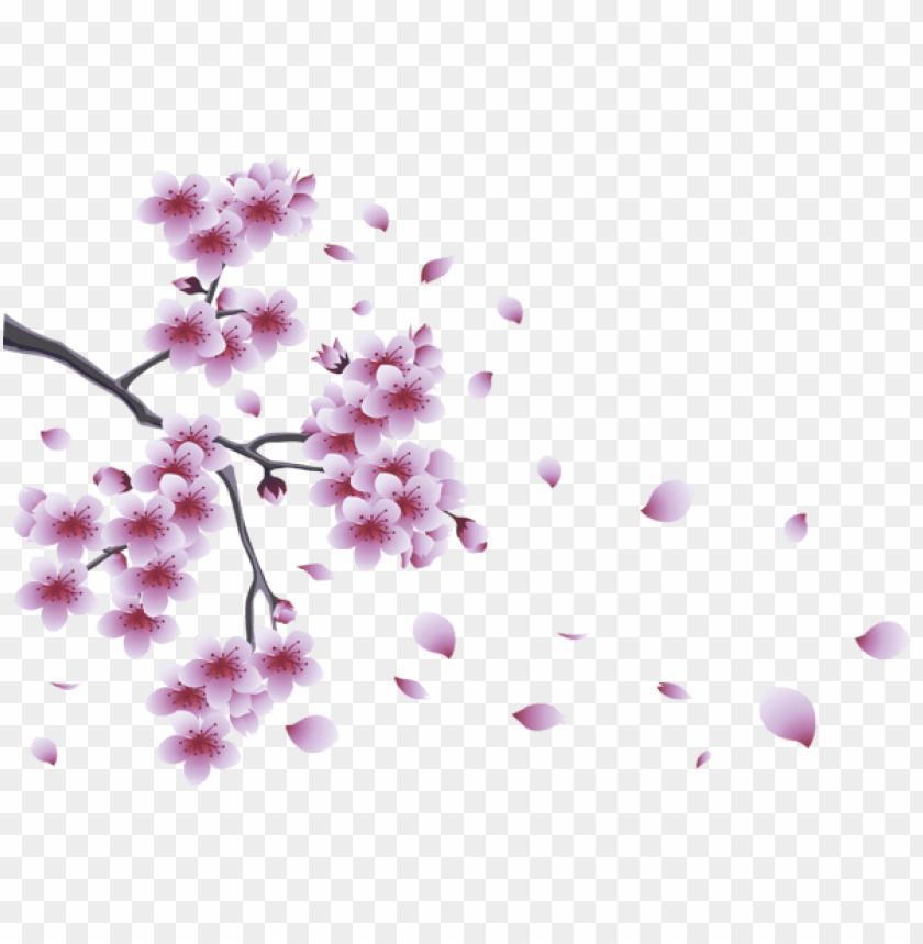 free PNG Download spring branch with tree flowers png images background PNG images transparent