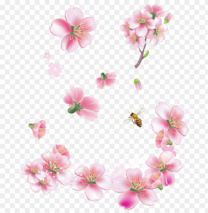 free PNG Download spring pink trees flowers png images background PNG images transparent