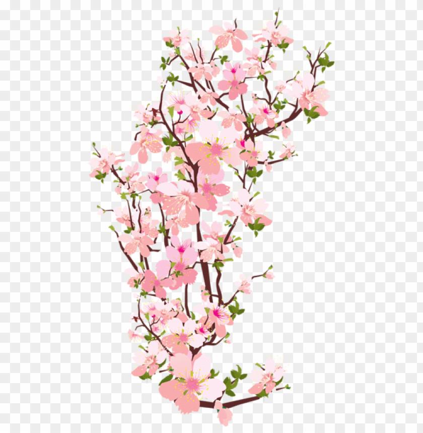 free PNG Download spring tree branch transparent png images background PNG images transparent