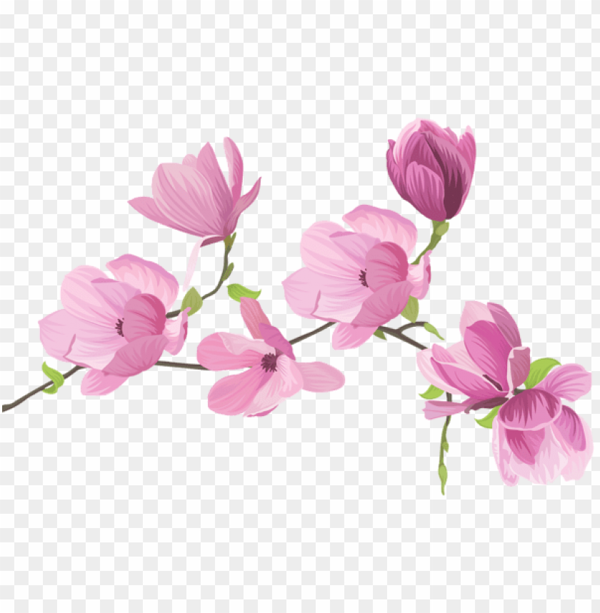 free PNG Download spring tree flowers png images background PNG images transparent