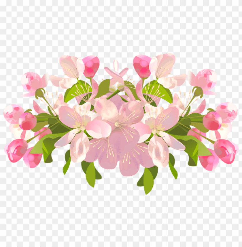 free PNG Download spring tree flowers transparent png images background PNG images transparent