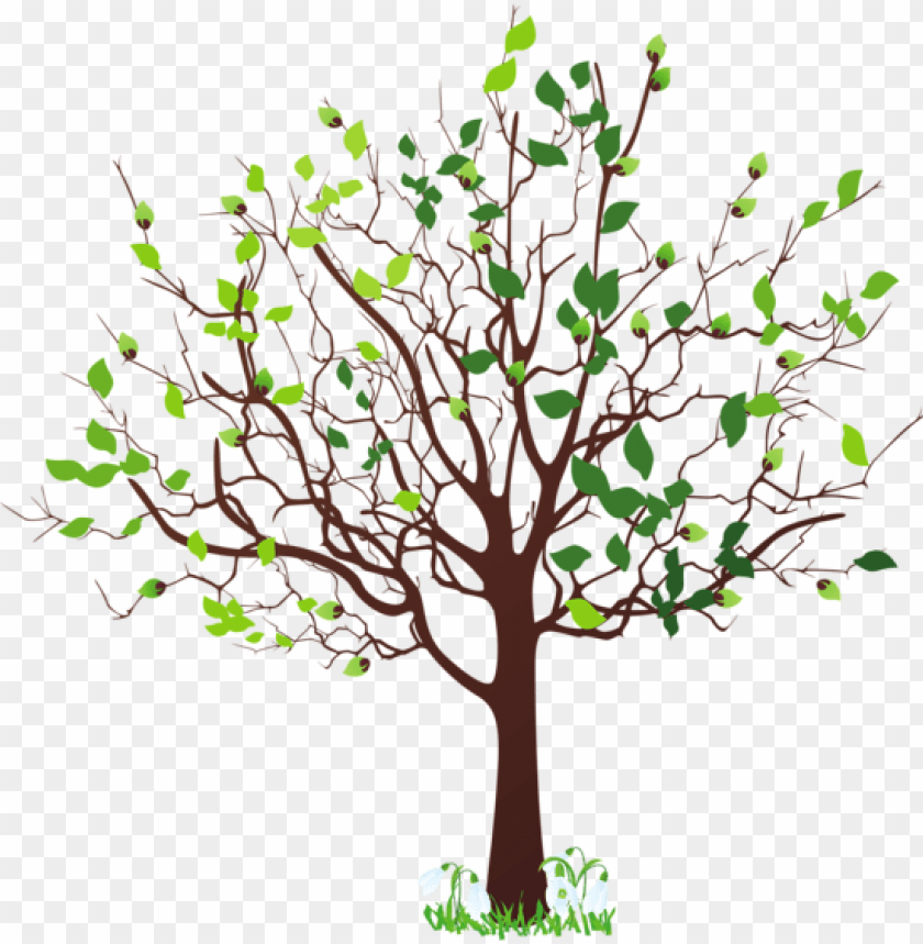 free PNG spring tree with snowdrops png clipart picture - spring tree clipart PNG image with transparent background PNG images transparent