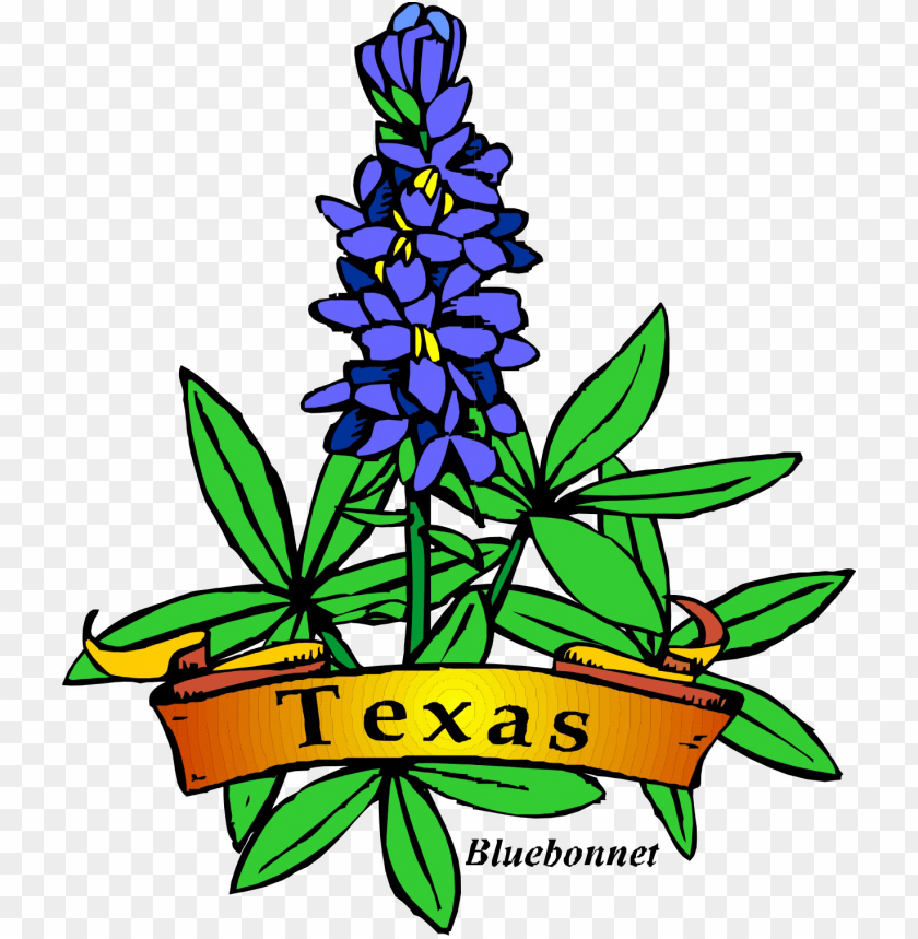 Texas Theme Day Camp Shac Png Royalty Free Download Texas State