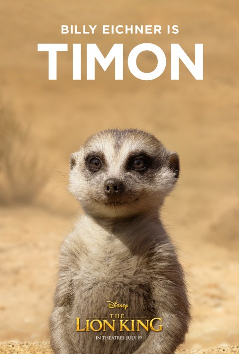free PNG the Lion King 2019 Poster With timon background best stock photos PNG images transparent