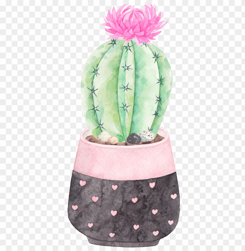 free PNG this graphics is a flowering cactus png transparent - cactus PNG image with transparent background PNG images transparent
